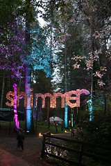 2016 - 14.10.16 Enchanted Forest - Pitlochry (12) (marie137) Tags: enchanted forest pitlochry mobrie137 scotland lights music people water reflection trees shows food fire drink pit patter shapes art abstract night sky tour family walk path bells smoke disco balls unusual whisperer bridge wood colour fun sculpture day amazing spectacular must see landscape faskally shimmer town
