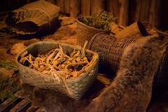 Longhousea at Iroquoian Village, Crawford Lake Conservation Area, Ontario (teachandlearn) Tags: wood ontario village iroquois canada enclosure road longhouse architecture indoor baskets firstnations