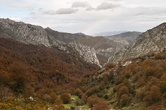 Hayedo de Purupintu (elosoenpersona) Tags: purupintu hayedo bosque forest otoo autumn parque redes asturias caso ponga foz saolla campigeos elosoenpersona fall rainbow arco iris