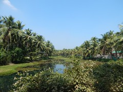 Villages Near Calicut Kerala Photography By CHINMAYA M (14)