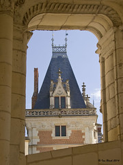 Late Gothic tower, Blois (ianhb) Tags: france blois chateau palace stone detail gargoyle gothic