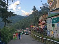 Mcleodganj_7306 (Manohar_Auroville) Tags: macleodganj mcleod ganj dharamshala tibet tibetan culture heritage himalaya himatyal pradesh india manohar luigi fedele dalailama forest mountain village
