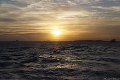 Travessia - Ilha de Itaparica/Salvador - Ba/Brasil (AmandaSaldanha) Tags: nature natureza landscape paisagem spring primavera sea mar beach praia sun sol sky cu colors colours