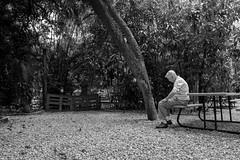 _DSC0360 (Bo Cherry) Tags: people elderly evergladeswondergarden