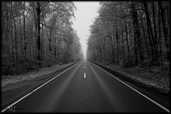 Road to...? (_Asphaltmann_) Tags: pentax pentaxlife pentaxians photosunlimted pentaxart photos pentaxda dahd1685mmf3556eddcwr wald forest fort bume bau tree trees arbre arbres kalt frost cold froid froide sw bw bn unlimited unlimitedphotos