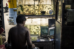The Aquarium Maker (arkamitralahiri) Tags: india indian colour travel streetphotography roadside road streetscene man people aquarium fish water bus kolkata calcutta bengal bengali street nikon d3100 shop business businessman 35mm