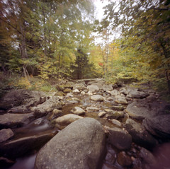 Low Flow (george.bremer) Tags: 6x6mk2 adirondacks autumn bed c41 epson fall film filmphotographyproject forest fpp keenevalley kodak longexposure newyork ondu pinhole portra400 riverbed rockandriver rocks scan stream trees usa v750 nicholsbrook