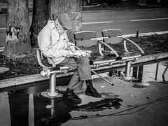 Repos (totofffff) Tags: cannes croisette france french riviera street alpes maritimes mditerrane noir blanc black white festival film olympus om d e m1 expo droite
