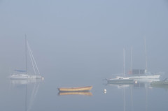 Boats in Fog (WoodlandsPhotography) Tags: sailboats ocean fog water reflection reflections sailboat oakbaymarina marinas still boat cloud foggy sky grey gray sail sea seas skies cloudy ship boathouse calm quiet morning mist misty oceanscape nature recreation relax transportation victoriabc canada canadian scenic scenery seaview view views scene tranquil peace zen peaceful coast coastal vancouverisland britishcolumbia harbor harbour nautical early northern pacific tranquility beautiful sailing yacht docks dock boating marilynwilson