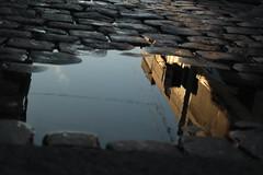[Palermo] Al revs. Una de las bondades de la lluvia (pablitux) Tags: buenosaires palermo cursofotografia