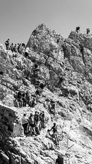 waiting for the top (*Schnatterinchen*) Tags: hiking alpen wandern zugspitze
