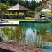 "F Milla blueBase Base5 Bio Schwimmbad Pool Teich Holzterrasse Stein Dusche • <a style=""font-size:0.8em;"" href=""http://www.flickr.com/photos/66233167@N05/21733833404/"" target=""_blank"">View on Flickr</a>"