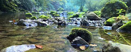Bliha river