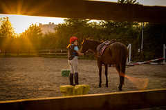 Riding lesson (Matt Bigwood) Tags: horse riding pony stable shepperdine