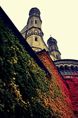 St. Martin's cloak (Nils van Rooijen) Tags: city autumn tower church boston architecture germany season deutschland colours cologne ivy köln stmartin walls keulen