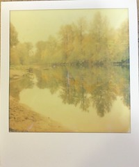 Reflecting (~KIM~) Tags: autumn trees reflection fall sx70 600 impossible northbend natureycrap