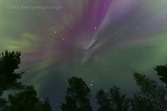 Angel Watch (maryanne.pfitz) Tags: trees nature skyscape photo woods michigan nightsky pinetrees laborday northernlights auroraborealis uppermichigan ahmeek keweenawcounty keweenawpenninsula coronadisplay maryannepfitzinger mapab2501