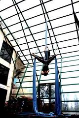 IMG_635559 (jorgepatricioch) Tags: chile circo duo tela acrobacias casablancachile