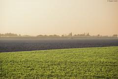 _DSC1485 (Ruggero Lauria) Tags: italy tractor nature field landscape strada farm grow campagna cielo campo fields ferrara plow agriculture hdr paesaggio aratro trattore campi agricoltura allaperto coltivare