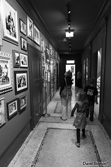 Chaplin's Wold (La vadrouille) Tags: muse suisse cire einstein