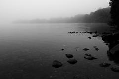 Misty Morning (B+W) (ben_thedriver) Tags: morning autumn trees summer england blackandwhite cloud sun mist colour tree film water clouds contrast canon walking landscape dead eos landscapes early high still raw quiet natural lakedistrict naturallight sharp hills filter lee nd bleak grad filmic constant ullswater filmlook constantlight ndgradfilter eos60d