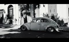 vw fusca en byn (_Joaquin_) Tags: auto ex car vw vintage uruguay dc nikon sigma oxido joaquin montevideo 1020mm tuning escarabajo dx fusca bajito trescruces hsm d3200 ratroad alpiso joalc lapizaga