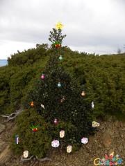 Navidad 6 (Laura.BDN) Tags: navidad feliznatal merrychristmas feliznavidad buonnatale froheweihnachten godjul joyeuxnol bonnadal hyvjoulua gldeligjul felicesfiestas   joyfulchristmas