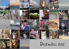 December 2015 mosaic (keepps) Tags: mosaic month bighugelabs