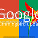 Google Hummingbird update clean birds simple