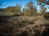 Hut circle ? (AJ Mitchell) Tags: hutcircle doline shadows causse quercy caylus scrub grassland