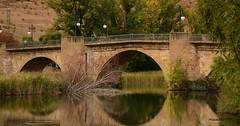 Soria.Rio Duero. (Miguel. (respenda)) Tags: soria rio puente rioduero agua