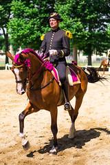 Le Cadre Noir (Cyberphilippe) Tags: cheval ene equitation cadre noir saumur carrousel