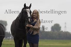 15 oktober 2016-45-2 (MZorro4) Tags: mariekehaverfotografie oudesluis schagen paardenfotografie portretfotos rijden wwwmariekehaverfotografienlpaarden