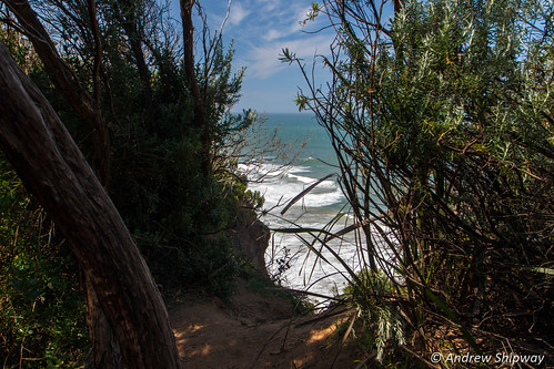 View from the Great Ocean Walk, Cape Otway, Victoria.