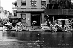 Home of the Horses (CVerwaal) Tags: blackandwhite streetphotography umbrellas carriages olympusem5 lumixgvario1235f28