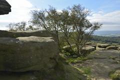 Brimham Rocks (156) (rs1979) Tags: brimhamrocks summerbridge nidderdale northyorkshire yorkshire loversleap