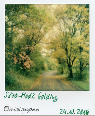 Herbst # 007 # Polaroid SX70-Mod2 folding Impossible SX70 Color - 2016 (irisisopen f/8light) Tags: polaroid sx70 mod2 impossible color analog sofort instant irisisopen
