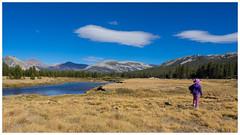 Tuolumne Meadows II (EastStorm) Tags: tuolumnemeadows yosemite meadows california sierra cloud