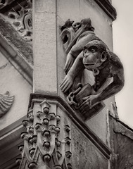 Monkey gargoyle (Tigra K) Tags: monkey paris france fr 2016 architdetail city gargoyle museum ledefrance