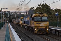 2016-10-28 Pacific National NR45-NR43-NR86-8118 Cowan 1BS2 (deanoj305) Tags: cowan newsouthwales australia au pacific national intermodal container train nr45 nr43 nr86 8118 1bs2 main north line nsw