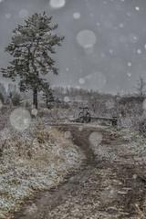 weather is fine (sami kuosmanen) Tags: bicycle suomi snow syksy taivas tree talvi winter snowing bokeh kuusankoski kouvola bike finland forest flash