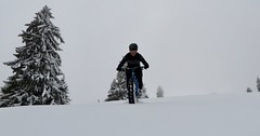 Tough Moving (collideous) Tags: fall autumn snow fatbike ride 12112016 slopes downhill