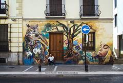 Street art in Granada, Spain (Naomi Rahim (thanks for 3 million visits)) Tags: art granada spain espaa europe europa 2016 travel travelphotography nikon nikond7200 wanderlust streetart streetphotography street graffiti summer siesta grunge elniodelaspinturas owl building architecture mural urban door windows