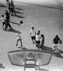 POINT (Dinasty_Oomae) Tags: zeissikon    supersix superikonta  blackandwhite bw monochrome outdoor jmsdf    tokyo setagayaku setagaya komazawa komazawaolympicpark  basketball shoot  boys