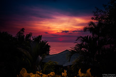 Pacific Calm (Rajesh Jyothiswaran) Tags: beach colorful costarica ocean pacific sky sunset tropical water clouds foliage landscape palm psychedelic resort serene sun trees