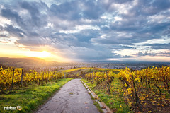Vineyards and Weather (Andy Brandl (PhotonMix.com)) Tags: germany nikon photonmix clouds sky vineyards autumn landscape beauty sun sunstar hdr kraichgau rauenberg wineregion pathway fieldroad village smalltown hills badenwuerttemberg deutschland weinanbau leaves herbst storm