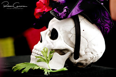 Day of the Dead 2016 18 (part 1) (Ruben Gusman Photography) Tags: thenelsonatkinsmuseumofart mariachis diadelosmuertos dayofthedeadskulls skeletons death donquioto kansascity