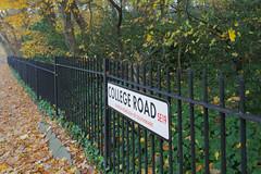 London Walk @ SE19 (Adam Swaine) Tags: se19 dulwich london roads broads woodland trees uk canon swaine leaves paths walks england britain