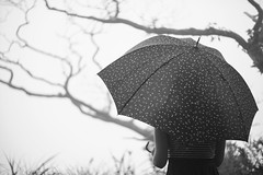The Girl With Umbrella (paveltravnicek89) Tags: blackandwhite mist japan fog umbrella haze waiting mood forrest bright takumar branches nostalgia drizzling smctakumar14