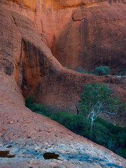 """Valley of the Winds • <a style=""""font-size:0.8em;"""" href=""""http://www.flickr.com/photos/44919156@N00/20483753120/"""" target=""""_blank"""">View on Flickr</a>"""